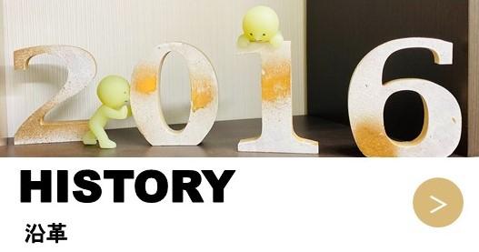 5-history