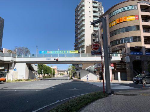 shiki_route_4